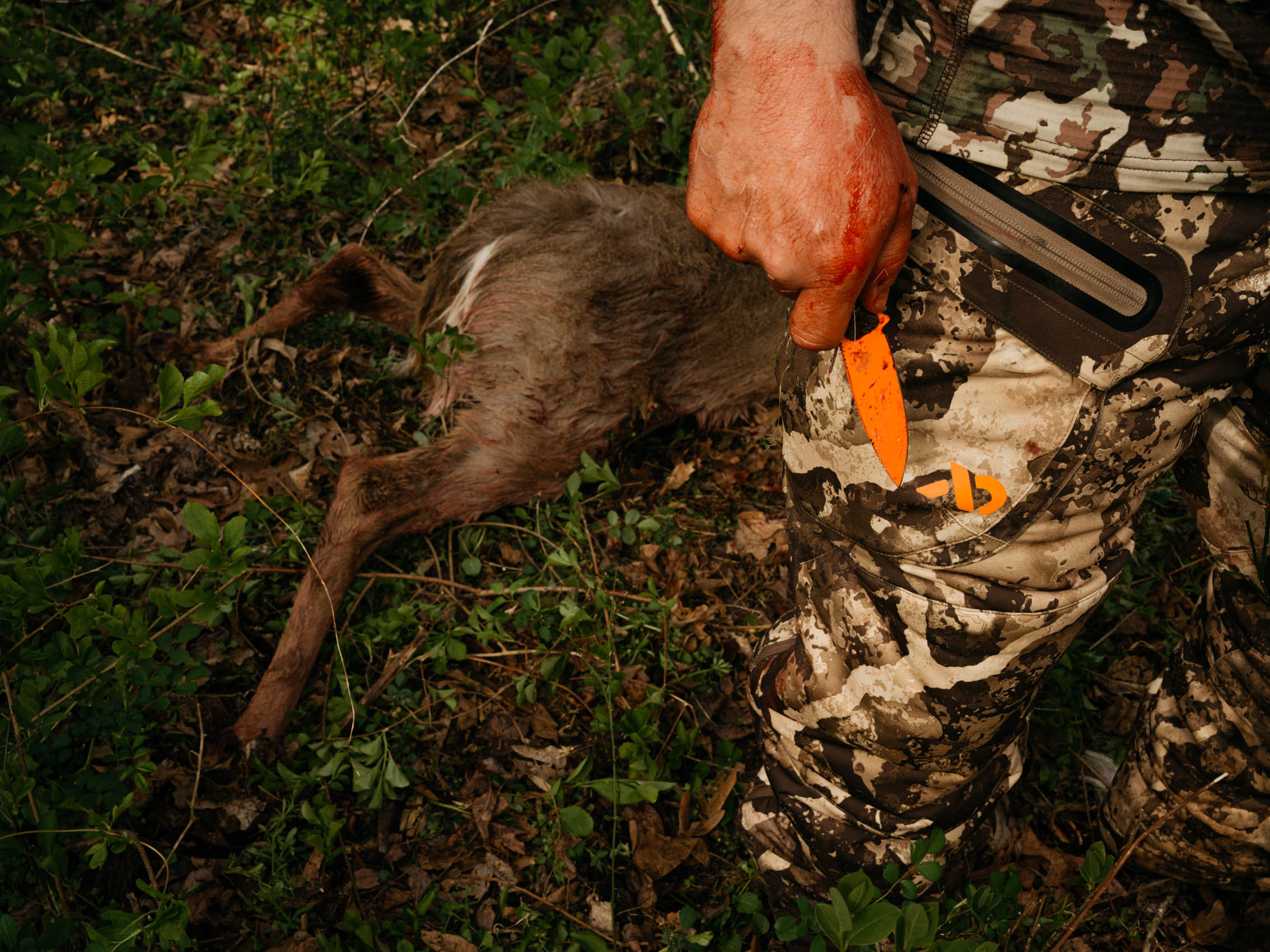 Deer Hunter with orange knife after dressing deer killed