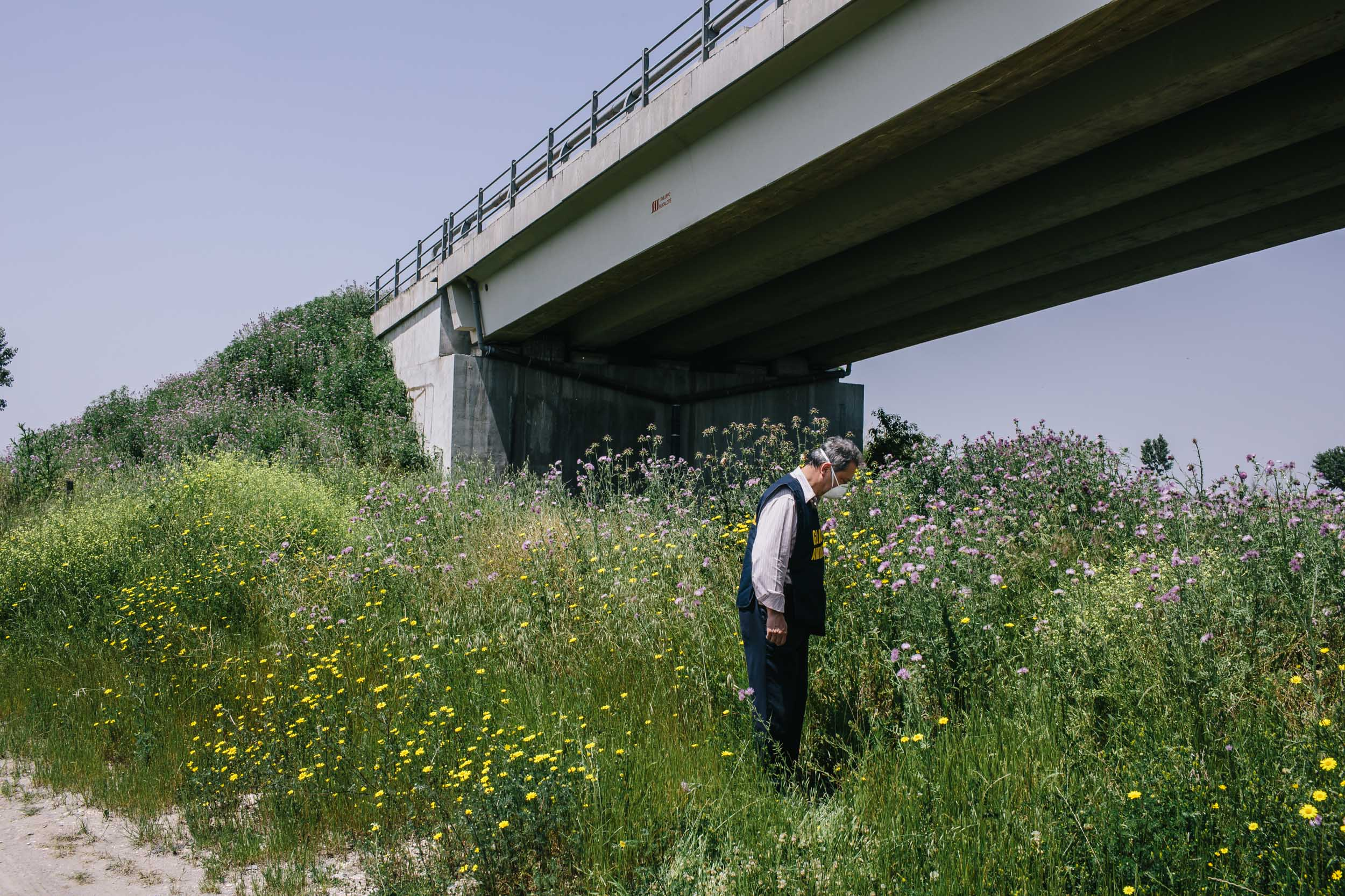 man with protective mask looking in field with flowers under bridge Italy